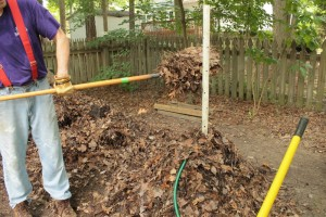 Compost 11