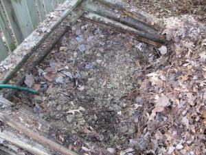 Compost 8