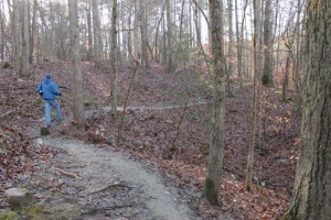 Umstead Hike