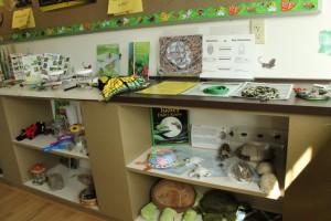 Wilkerson Nature Preserve (14)