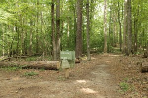 Wilkerson Nature Preserve (3)