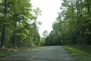Wilkerson Nature Preserve (9)