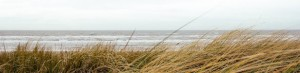 q3Y09XWNRRC5Et7bEQnE_beach-alex-talmon1