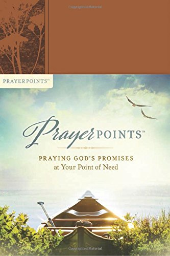 Book Review – PrayerPoints