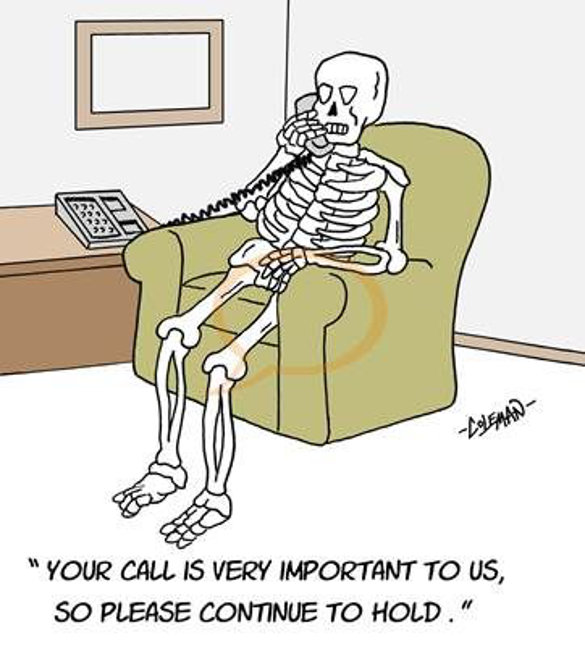Waiting in the Call Queue