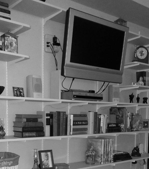 Wall of Shelves Crop 11
