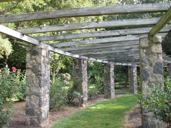 NicholsNotes Raleigh Rose Garden (1)