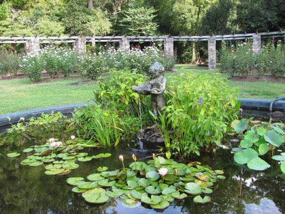 NicholsNotes Raleigh Rose Garden (14)