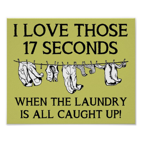 Source: http://quotesgram.com/img/funny-quotes-about-laundry/3292856/