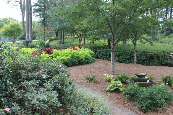 nicholsnotes-wral-gardens-oct-2016-48
