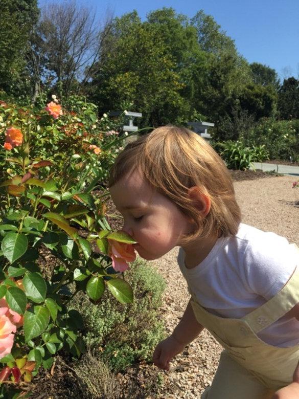 Garden Praises