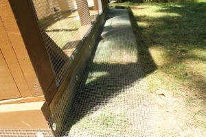 Chicken Coop (16)