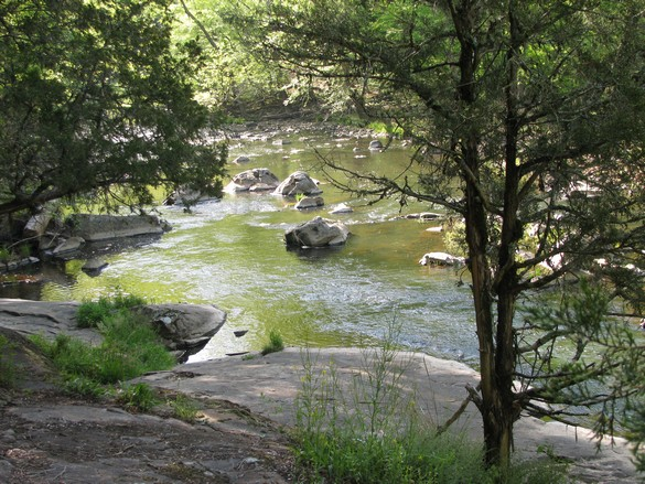 Eno River State Park (7)