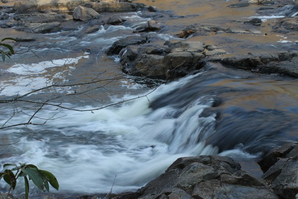 Eno River State Park (9)
