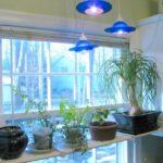 Kitchen Plant Shelf (48)