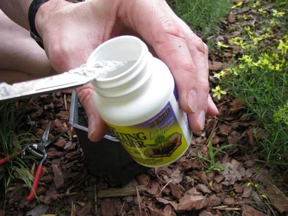 Layering Woody Plants (30)