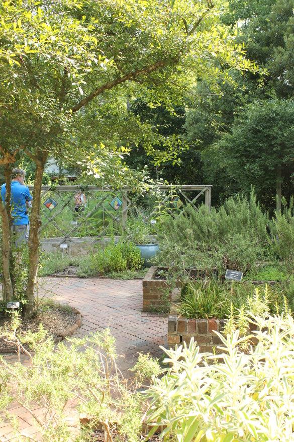 NC Botanical Garden 7_6_14 (132)