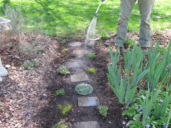 Path Design (2)