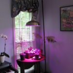 Pole Lamp Grow Light (30)