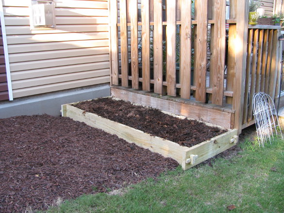 Raised Garden Bed (64)