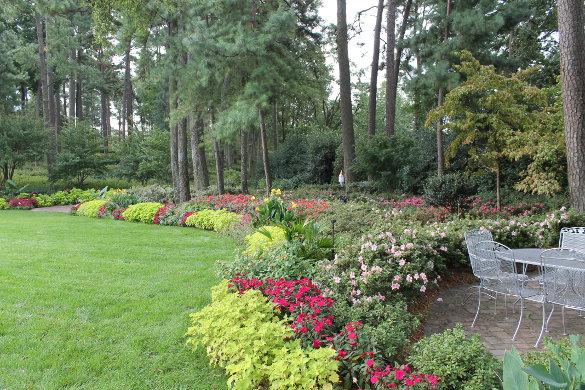 WRAL Gardens Oct 5 2016 (67)