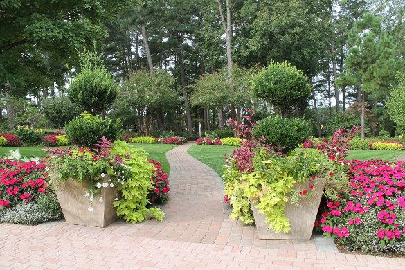 WRAL Gardens Oct 5 2016 (80)