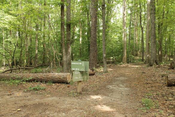 Wilkerson Nature Preserve 8_21_14 (55)