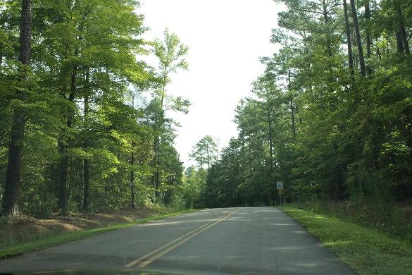 Wilkerson Nature Preserve 8_21_14 (61)
