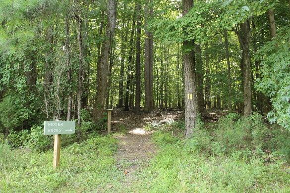 Wilkerson Nature Preserve 8_21_14 (74)