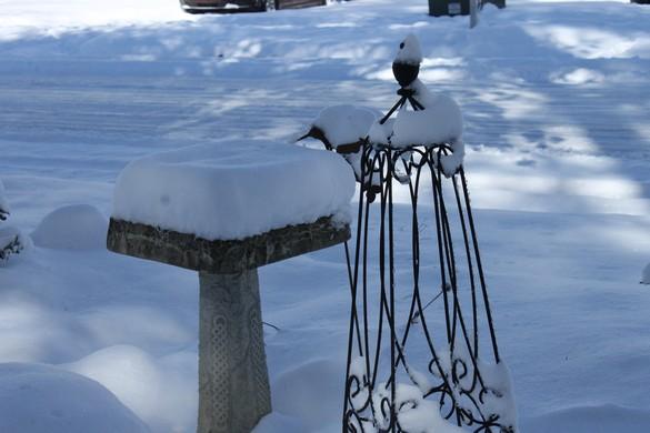 January 2018 Snow (12)