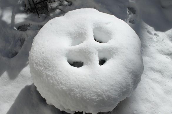 January 2018 Snow (5)
