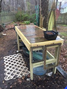 Potting Bench 2019 (22)