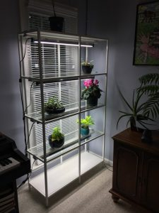 IKEA Planting Shelves
