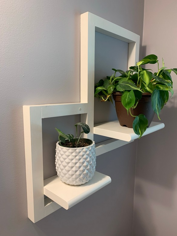 Powder Room Plant Shelf (1)