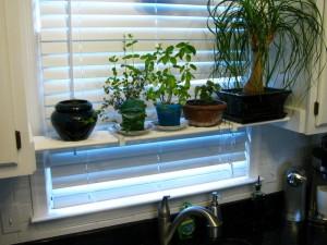 DIY Kitchen Plant Shelf (6)