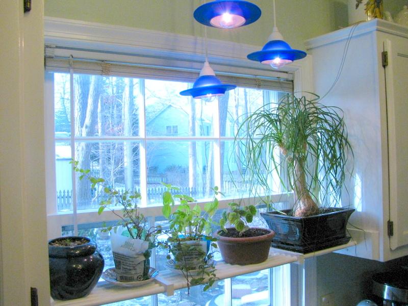 Diy Kitchen Plant Shelf Nicholsnotes