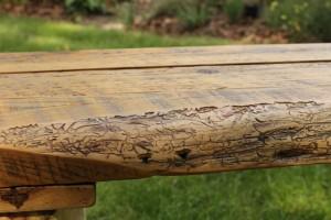 Cedar Bench NicholsNotes (13)