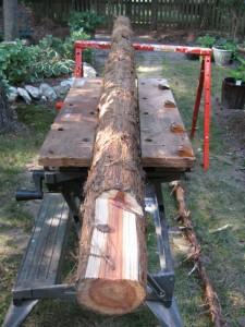 Cedar Bench NicholsNotes (9)