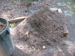 Compost Followup (4)