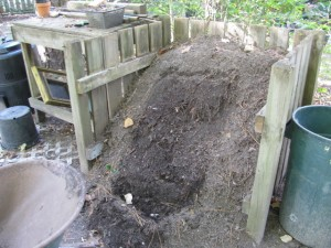 Compost Followup (6)