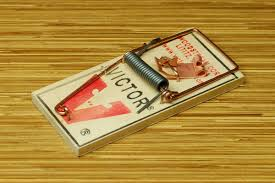 Victor Mouse Trap