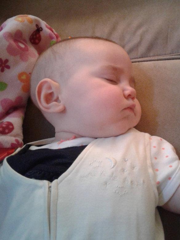 Fern Sleeping
