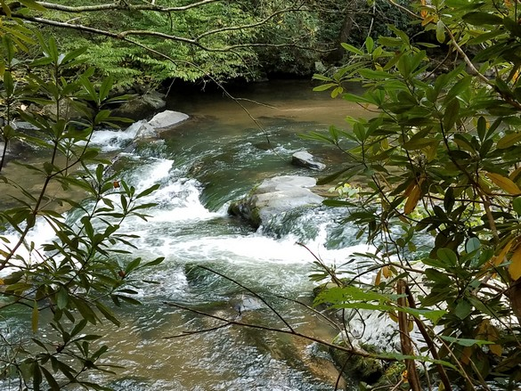 Pisgah National Forest Hot Springs NC Sep 2018 (7)