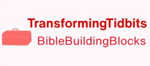 TransformingTidbits